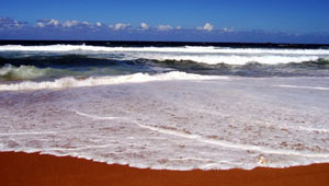 A-day-trip-to-Stanwell-Park-Beach
