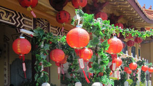 New-Year's-Day-at-Nan-Tien-Temple-Vegetarian-Food-Fair