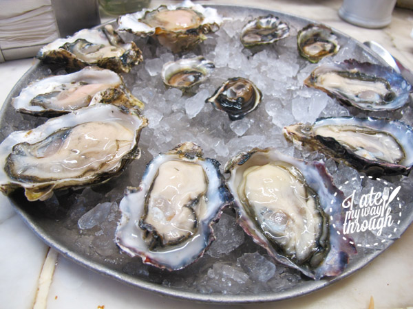 oyster, oysters