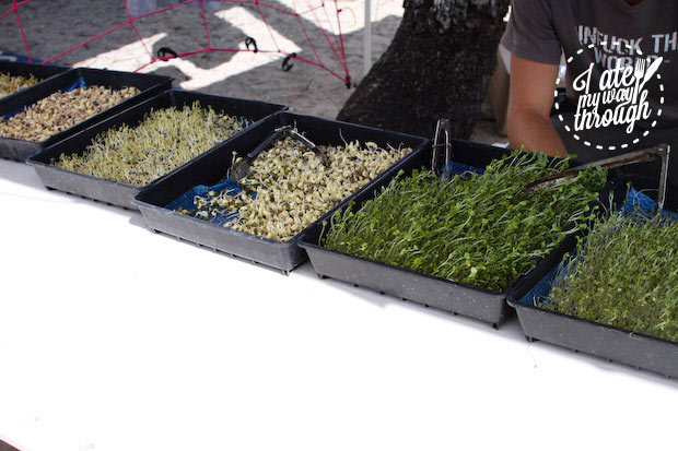 Sprouts, Airlie Beach Markets