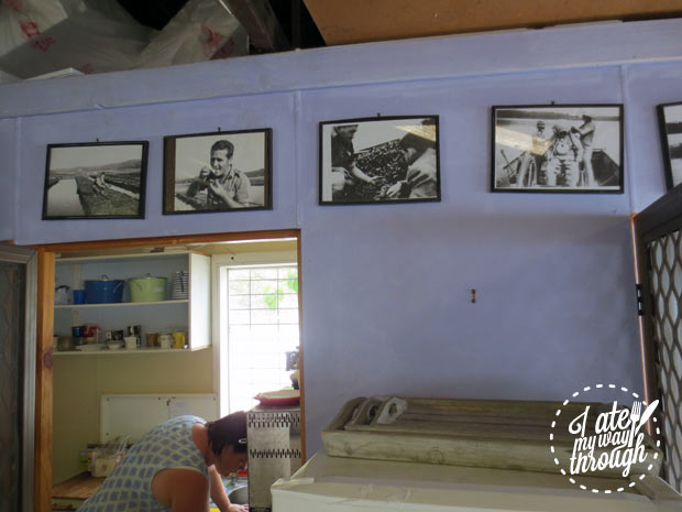 The Oyster Shed, photos of family history