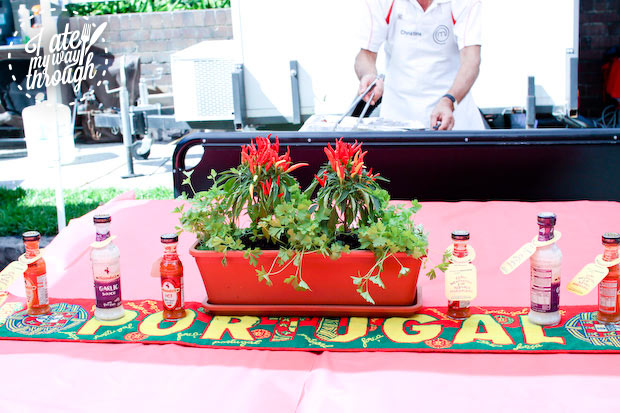 Chilli plants at table - Bairros Portugues Petersham Festival 2014