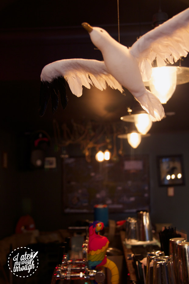 Seagull hanging over the bar