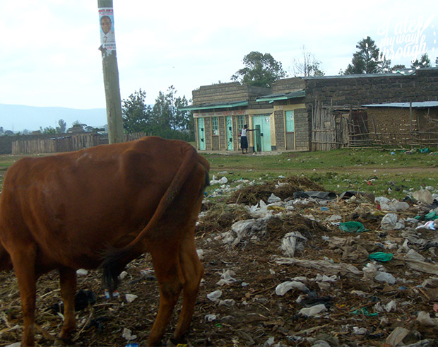 The dillapidated houses and poverty of Nakuru Town, Kenya.