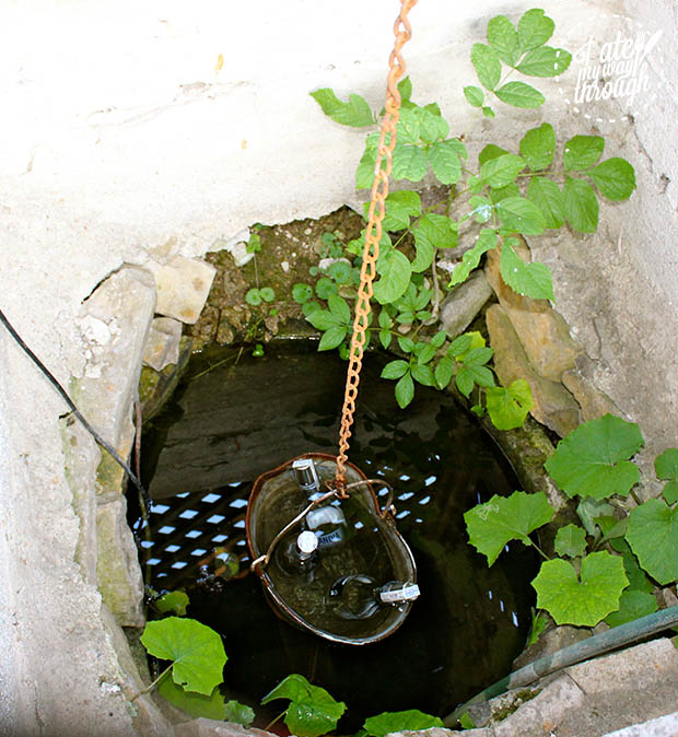 And if you were so inclined there is vodka chilling in the well. We were so inclined.