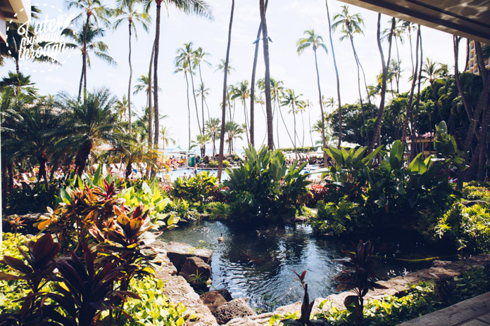 One of the many lush gardens within Hilton Hawaiian Village